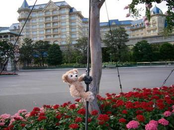 2009年8月ディズニーリゾート 018.JPG